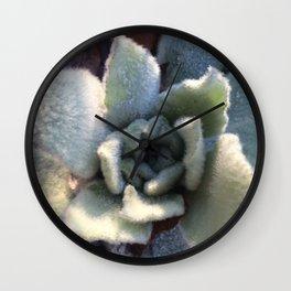 Naturals by Nikki - Lamb's Ear Plant Wall Clock
