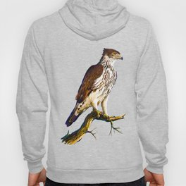 African hawk Eagle Hoody