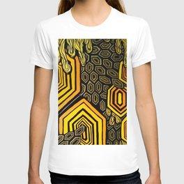 Hexagonal Reflections of an Empty Hive T-shirt