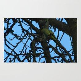 Moonlighting Parakeets Rug