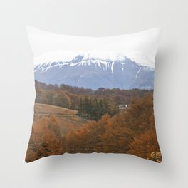 Atumn has come Throw Pillow