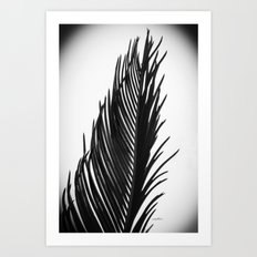 Palm: The Abstract in Black Art Print