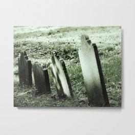 Franken - Grave Metal Print