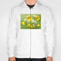 Delicate Yellow Hoody
