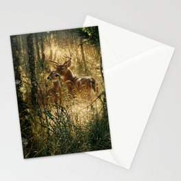 Whitetail Deer - A Golden Moment Stationery Cards