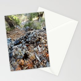 Spar Stationery Cards