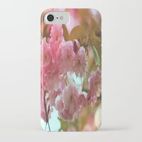 cherry blossoms iPhone & iPod Cases featuring Cherry Blossoms by Judy Palkimas