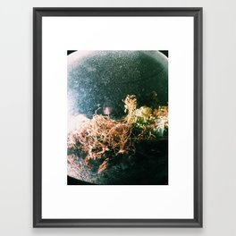 Seathrough Framed Art Print