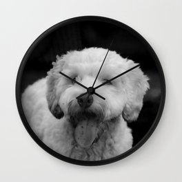 White fluffy labradoodle puppy dog with tongue hanging out Wall Clock