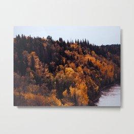 Beautiful Autumn Forest Orange & Brown Leaves Metal Print