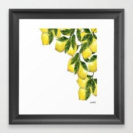 Lemons picture Framed Art Print