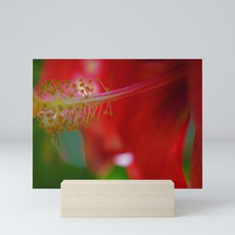 Dreamy Red Hibiscus by Reay of Light Mini Art Print