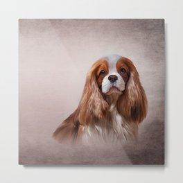 Dog breed Cavalier King Charles Spaniel Metal Print