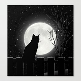 Silent Night Cat and full moon Canvas Print