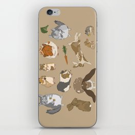 Small pets iPhone Skin