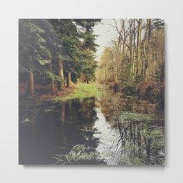 flooded forest track. norfolk, uk. Metal Print