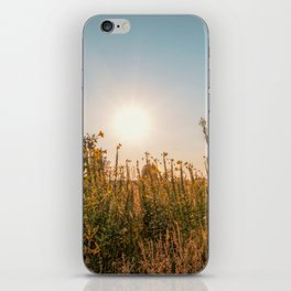 Uncultivated field in the Lomellina countryside at sunset full of yellow flowers iPhone Skin