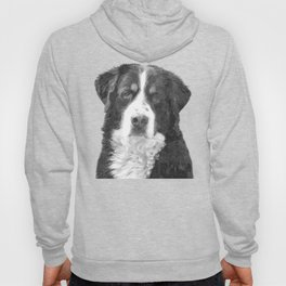 Black and White Bernese Mountain Dog Hoody