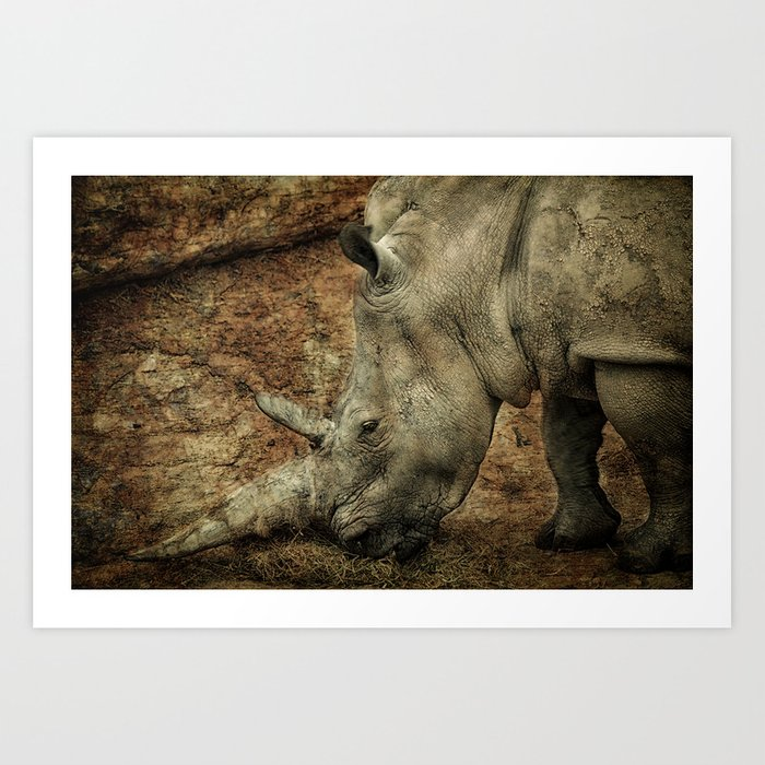 Between a Rock and a Hard Place Art Print