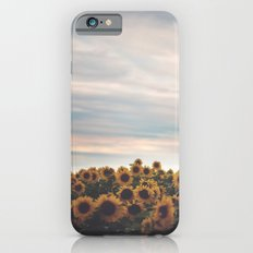 Sunflowers Slim Case iPhone 6