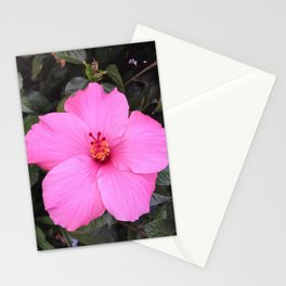 Hibiscus listens Stationery Cards