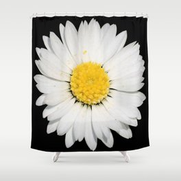 Nine Common Daisies Isolated on A Black Backgound Shower Curtain