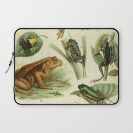 Frogs And Toads Laptop Sleeve