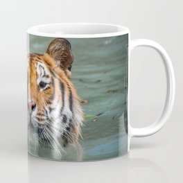 Cincinnati the Tiger in the Pool Coffee Mug