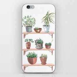 flowerpots on the shelves iPhone Skin