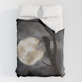 Full Moon Committee Comforters