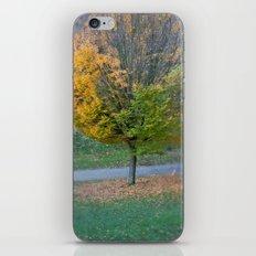 Autumnal iPhone & iPod Skin
