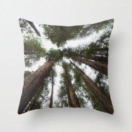 Redwood Portal - nature photography Throw Pillow
