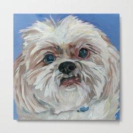 Ruby the Shih Tzu Dog Portrait Metal Print