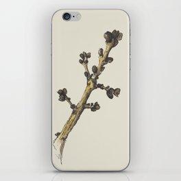 sprig iPhone Skin