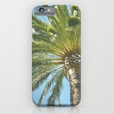 Under the Palm Tree iPhone 6s Slim Case