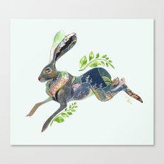 Spring Rabbit Canvas Print