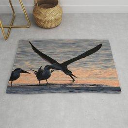 Watercolor Bird, Black Skimmer 09, Gulf Island Beach, Florida, Hunt at Twilight Rug