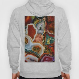 The Earth for the all-pervading Skies, the Moon and the Sun Hoody