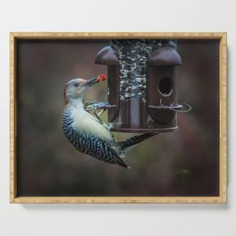 Red-bellied Woodpecker and fruit Serving Tray