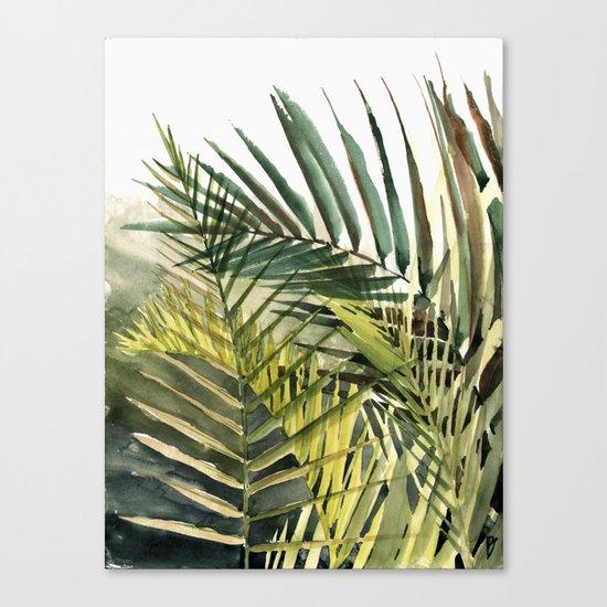 Arecaceae - household jungle #2 Canvas Print