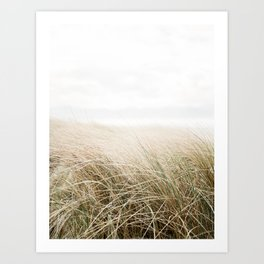 Dune grass | Ireland travel photogragraphy print | At the beach Art Print