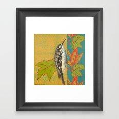 Brown Creeper Framed Art Print