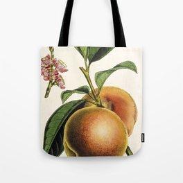 A peach plant - vintage illustration Tote Bag