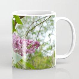 """Country Romance"" Floral Photography, Nature Print Coffee Mug"