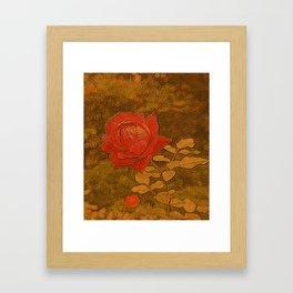 A Rose Series II Framed Art Print