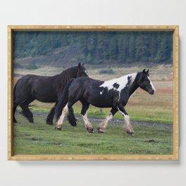 Gypsy Vanner Horses 0096 - Colorado Serving Tray
