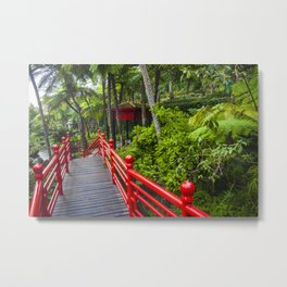 Red path Metal Print