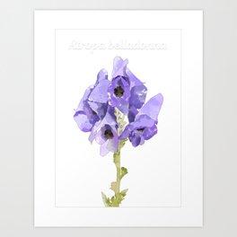 Atropa belladonna Art Print