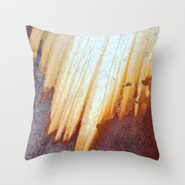 Rain Rusted Roof Throw Pillow