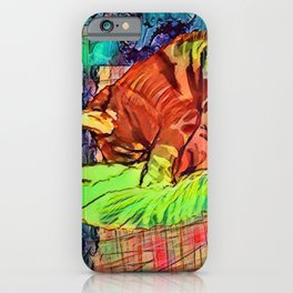 Sleeping Spicy Feline Painting (Ginger Cat) iPhone Case
